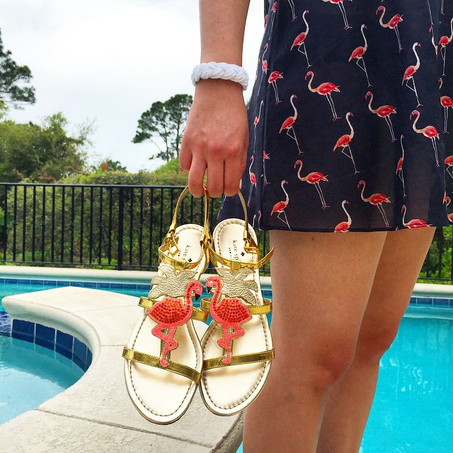 i have this thing with flamingos.... @liketoknow.it www.liketk.it/1ifit #liketkit @katespadeny…