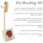 Beauty:  Dry Brushing