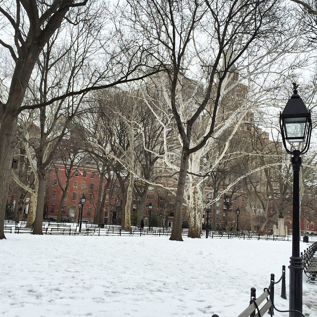 a snowy afternoon in Washington Square Park..