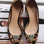 Lulu-Frost-Shoe-Clips-1
