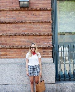 Loft Gingham Shorts - The Stripe