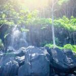 Kauai North Shore… Like a Local.