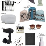 Kelly's Chic Under $100: Travel Essentials.