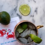 The Perfect Moscow Mule.