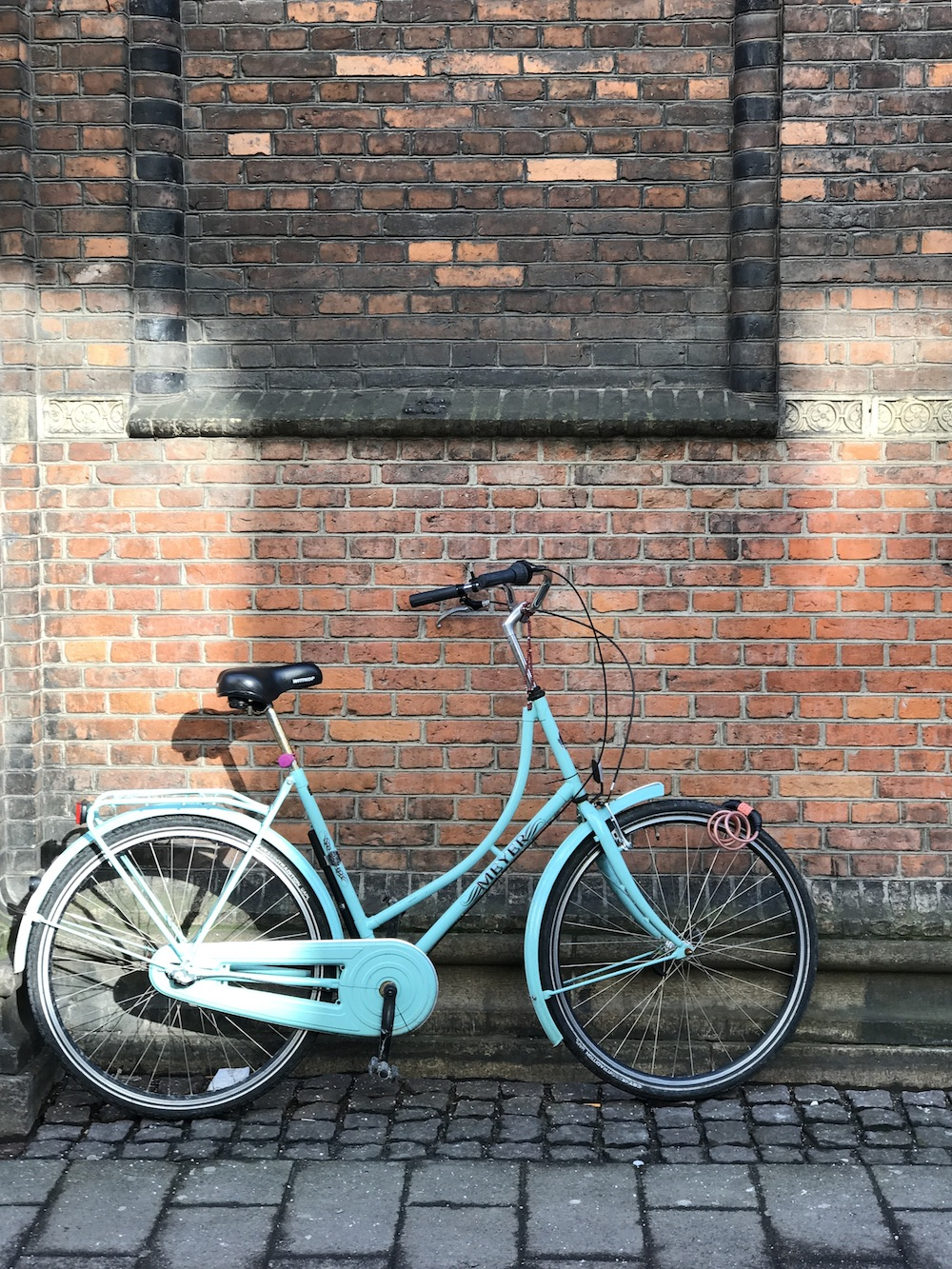 48 hours in Copenhagen | Bicycle along the street / Grace Atwood, The Stripe