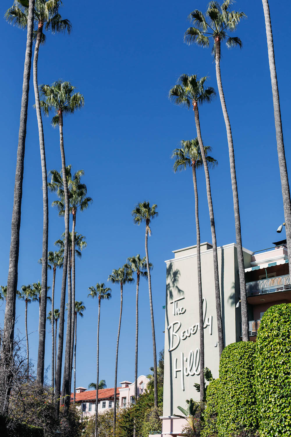 a stay at The Beverly Hills Hotel / The Stripe