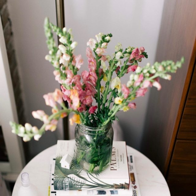 The prettiest fresh flowers Snapdragons! for the week ahead hellip
