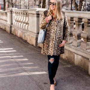 Leopard on Leopard.