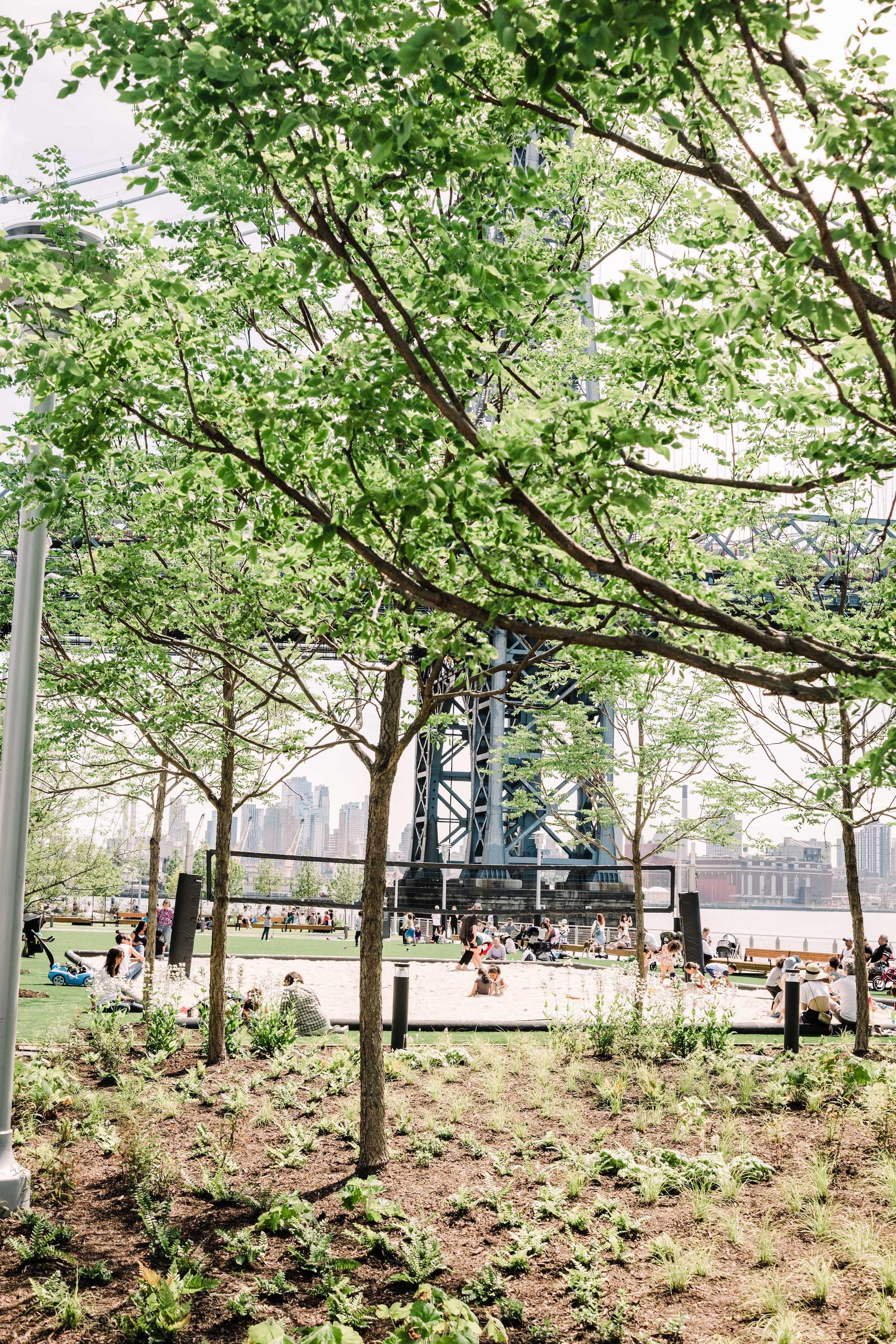 Domino Park in Williamsburg - The Stripe