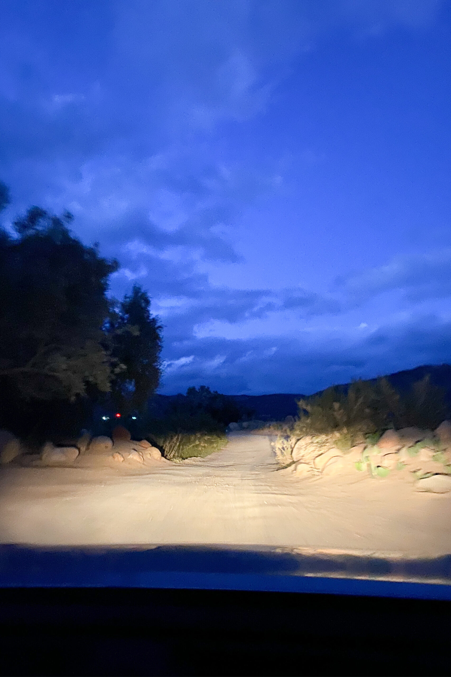 driving into our dinner at Fauna
