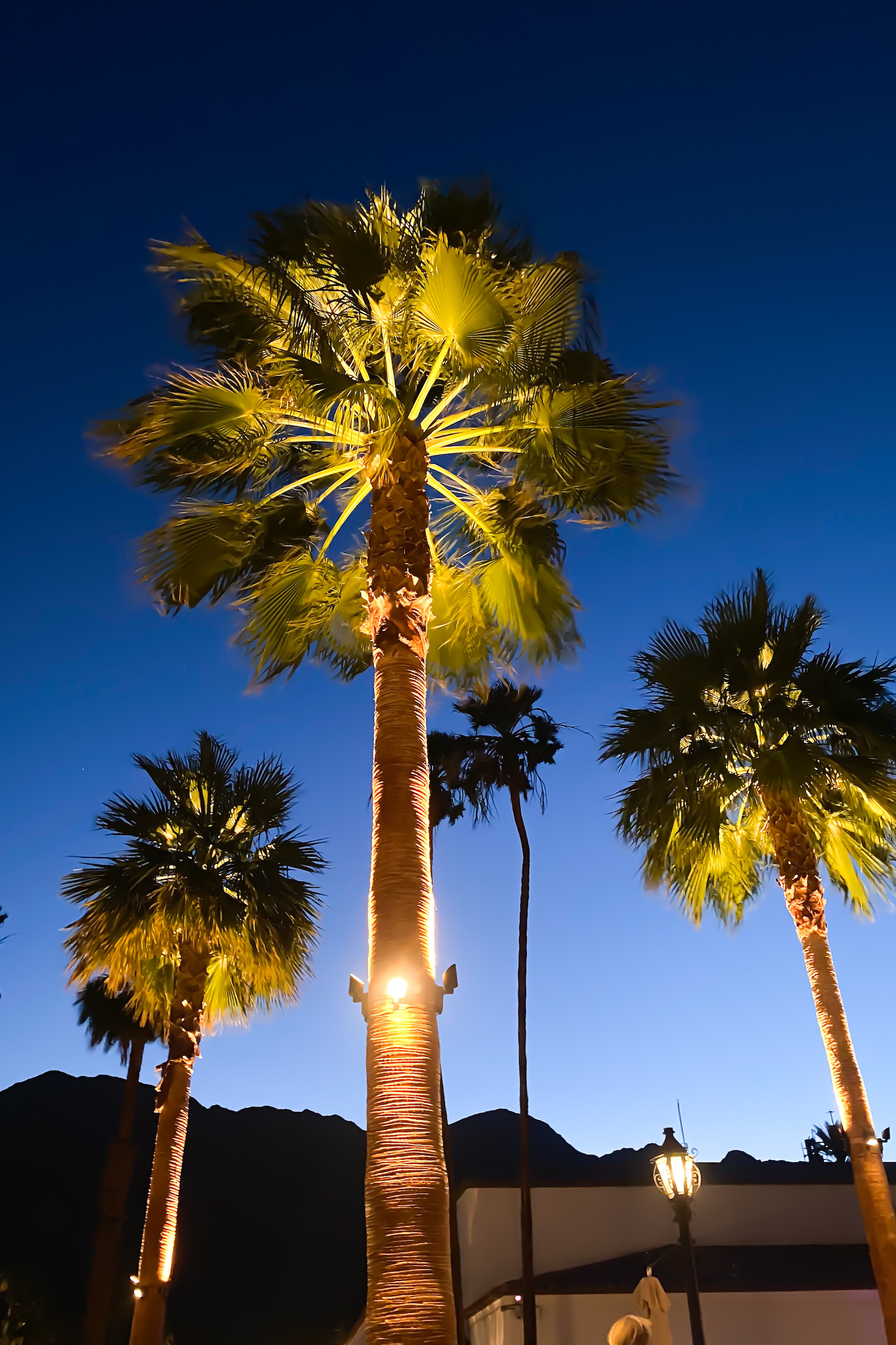 Where to eat in La Quinta + Palm Springs
