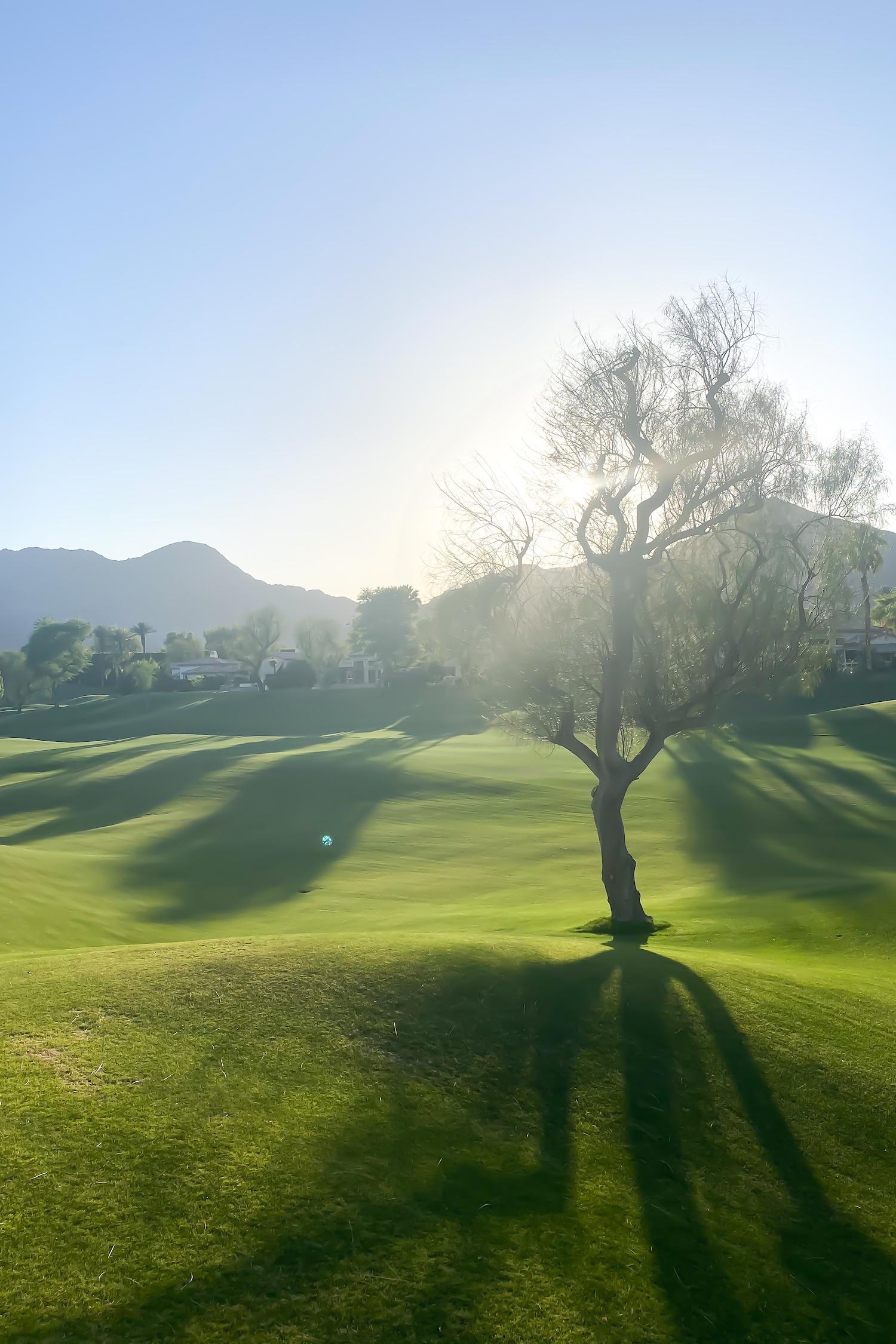 La Quinta + Palm Springs travel